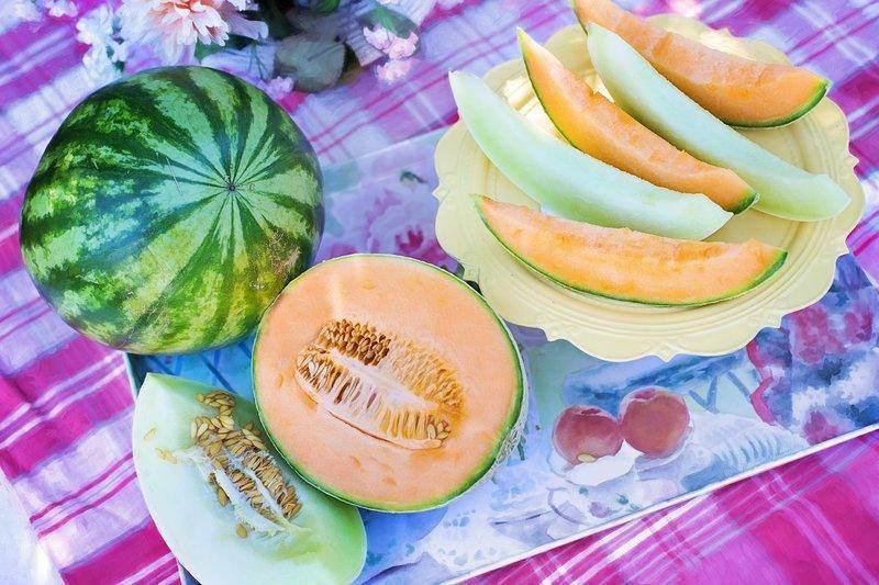 Ovocia a zelenina sú v sezóne vždy najčerstvejšie