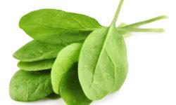Špenát je veľmi prospešný pre zdravie.
