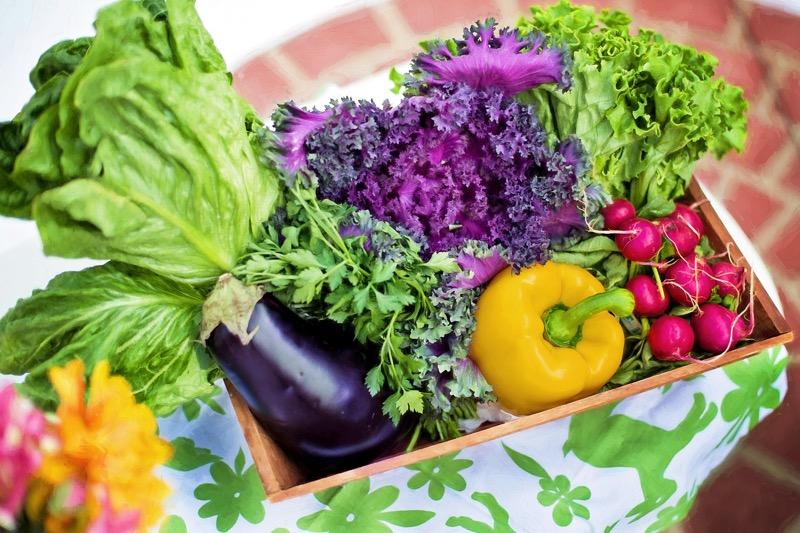 Detoxikácia organizmu môže byť úspešná len so zmenou stravovacích návykov.