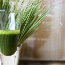 Zelené superpotraviny