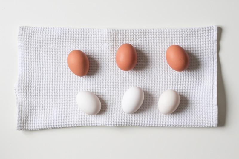 vajíčka sú výborný zdroj bielkovín