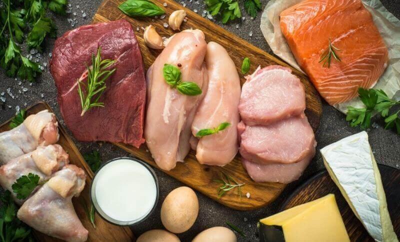 Živočíšne bielkoviny obsahujú esenciálne aminokyseliny, ktoré si telo nedokáže vytvoriť samo.