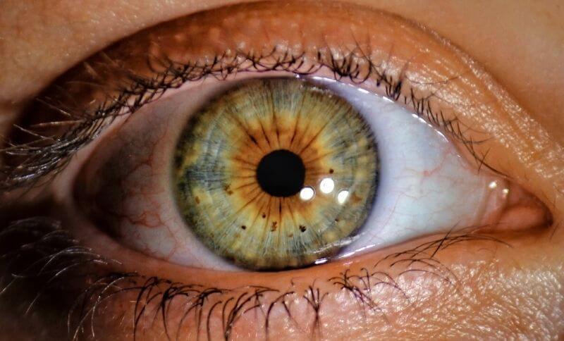 V rohovkovom epitely oka sa nachádza kolagén II typu.