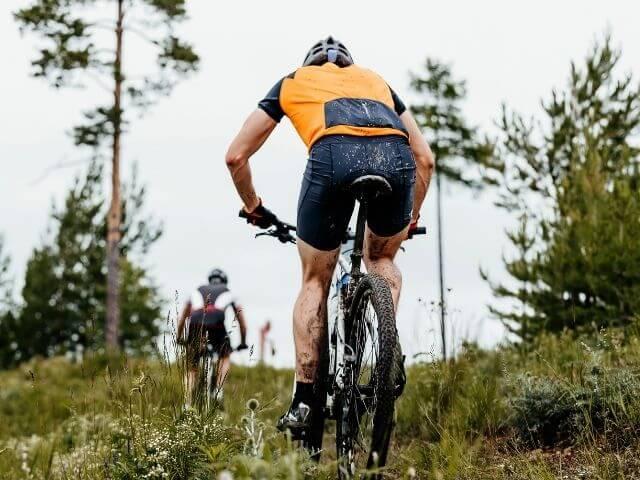 L-karnitín je prospešný hlavne pre športovcov, keďže zvyšuje fyzický výkon, vytrvalosť a obratnosť.